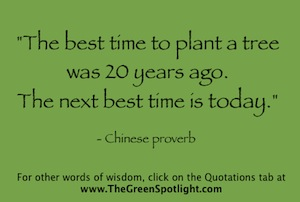 Great Quotations Words Of The Wise The Green Spotlight